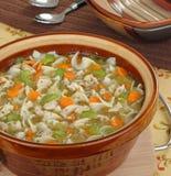 鸡蔬菜汤 库存图片