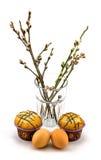 鸡蛋、杯形蛋糕和杨柳在白色背景 免版税库存照片