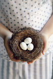 鸡蛋一点 库存图片