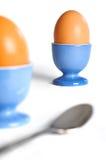 鸡蛋二 库存图片