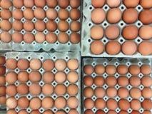 鸡蛋包装很多同一个排序 库存图片
