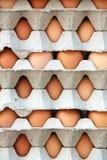 鸡蛋包装模式 图库摄影