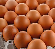 鸡蛋和下蛋块纸 库存照片