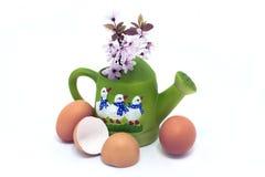 鸡蛋和开花在绿色喷壶与鹅 库存图片