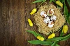鸡蛋和郁金香的复活节装饰在木背景 免版税库存图片
