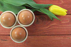 鸡蛋和郁金香 免版税库存图片