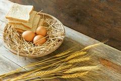 鸡蛋和面包在篮子 库存图片