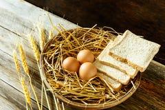 鸡蛋和面包在篮子 库存照片