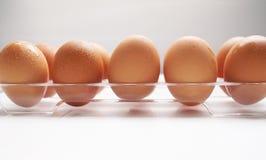 鸡蛋和食物 免版税图库摄影
