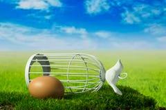 鸡蛋和鸟笼在绿色幻想草甸 免版税图库摄影