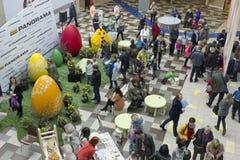 鸡蛋和鸡设施 免版税库存图片