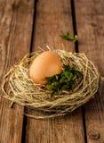 鸡蛋和黄杨属在干草在土气木头筑巢 图库摄影