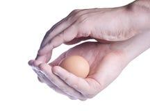 鸡蛋在手上。保护的概念 库存照片