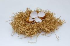鸡蛋壳在巢的 免版税图库摄影