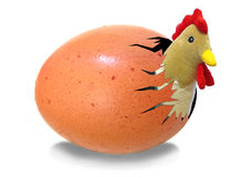 鸡蛋孵化 免版税库存图片