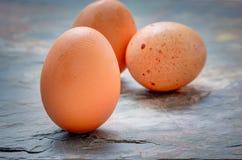 鸡蛋射击了石背景 免版税库存图片