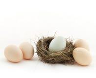 鸡蛋怂恿四里面嵌套一外部 图库摄影