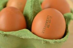 鸡蛋特写镜头与有效期 库存图片