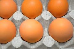 鸡蛋特写镜头与有效期 免版税库存照片
