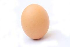 鸡蛋玷污了 库存照片