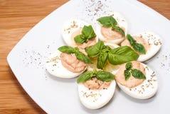 鸡蛋用金枪鱼调味汁 免版税库存图片