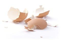 鸡蛋的壳。 库存照片