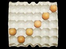 从鸡蛋的校验标志在载纸盘 免版税图库摄影
