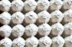 鸡蛋的纸盒盘子 免版税库存照片
