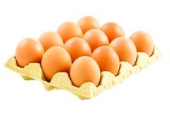 鸡蛋盘  图库摄影
