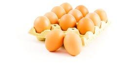 鸡蛋盘  库存照片