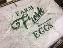 鸡蛋种田新符号 库存图片