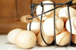 鸡蛋种田新鲜 免版税库存图片