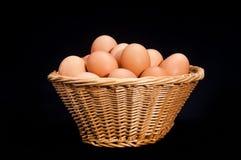 鸡蛋篮子  免版税库存照片