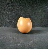 鸡蛋蛋壳  库存照片