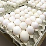鸡蛋装箱 免版税图库摄影