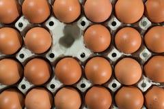 鸡蛋,一蛋丢失 库存照片