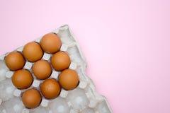 鸡蛋,在桃红色背景的鸡蛋 怂恿盘子 库存图片