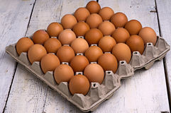 在一个载纸盘的鸡蛋 免版税库存图片