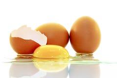 鸡蛋,鸡蛋,蛋黄的壳,隔绝在白色背景 免版税库存照片