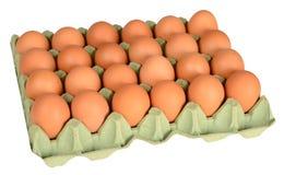 鸡蛋 查出 免版税图库摄影