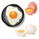 鸡蛋 向量例证