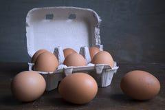 鸡蛋 库存照片