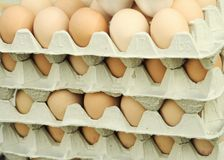 鸡蛋stappled 库存照片