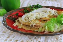 鸡辣酱玉米饼馅用绿色调味汁 库存照片