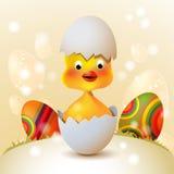 鸡逗人喜爱的复活节 免版税图库摄影