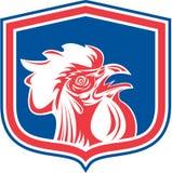 鸡雄鸡头减速火箭吉祥人的盾 库存图片