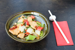 鸡食物日语 免版税库存照片