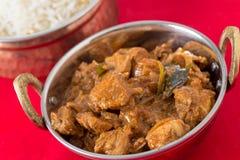 鸡马拉巴尔咖喱和米 库存图片