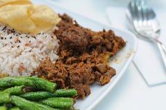 鸡马来的羊肉rendang米素食主义者 免版税库存图片