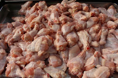 鸡鲜肉 免版税库存图片